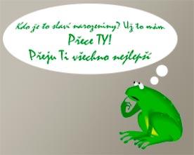 Obrázek zelené žabky