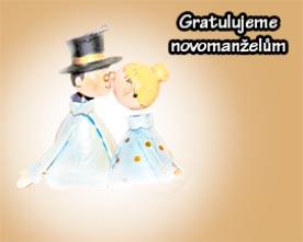 Obrázek figurek novomanželů