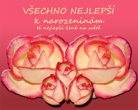 přání k narozeninám z lásky Přání k narozeninám   růže přání k narozeninám z lásky