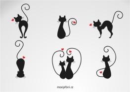 Přání z lásky kočičky
