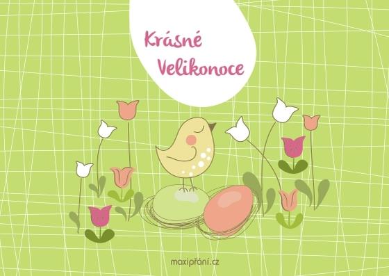 Velikonoční pohlednice s kuřátkem - přední strana