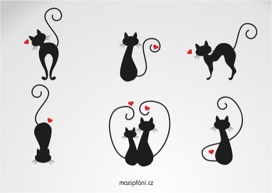 Zamilované obrázkové přání z lásky - kočičky - přední strana